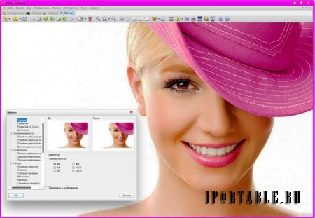 XnView 2.23 Full Rus Portable - �������� � ������ � ��������