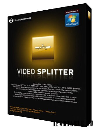 SolveigMM Video Splitter 5.0.1503.17 Business Edition Portable